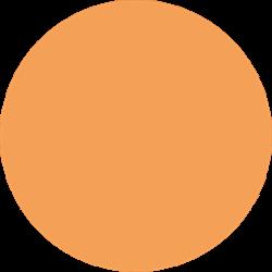 Stahls CCPP185 Cad-Cut Premium Plus Light Orange