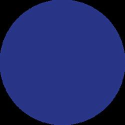 Stahls CCPPN300 Cad-Cut Premium Plus Nylon Royal Blue