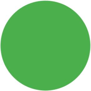 Stahls CCSF401 Cad-Cut Sportsfilm Fluor Green