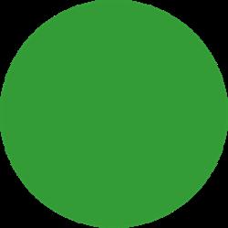 Stahls CCPPS422 Cad-Cut Premium Plus Sublistop Light Green