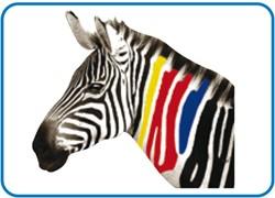 Stahls CCSF Cad-Color Solvent Flock Printmedia