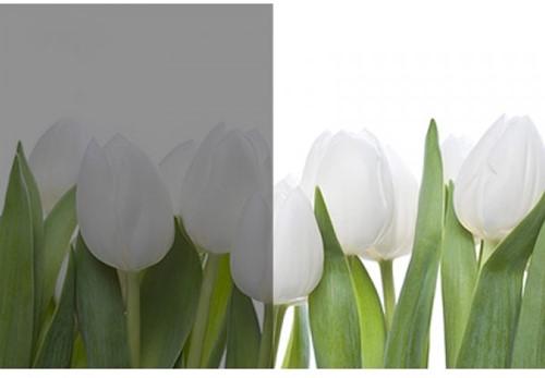 Hanita White Out R073WO 1829mm