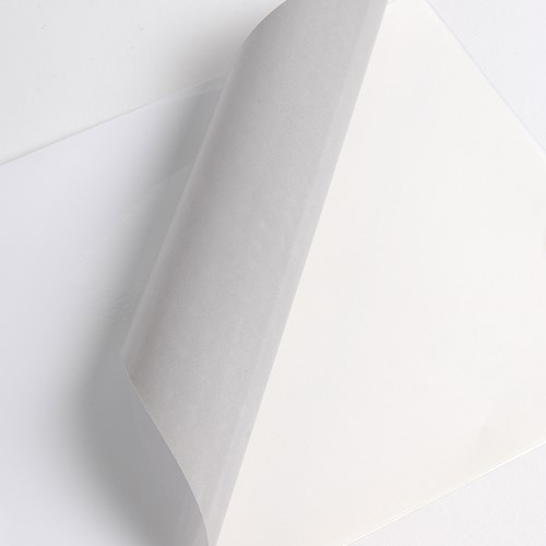 Hexis HX3000WG2 Monomeer printmedia 45m x 1600mm