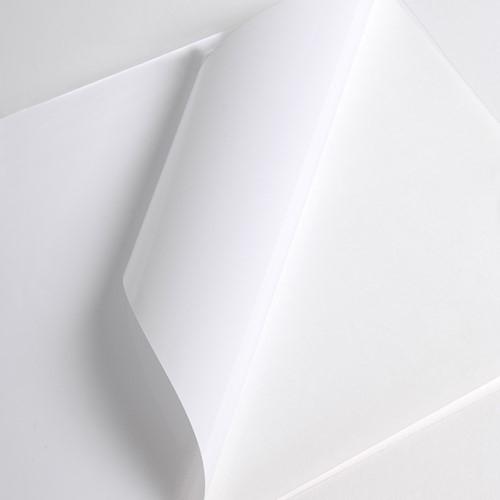 Hexis V3001WG Monomeer printmedia 45m x 1370mm