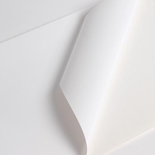 Hexis V3001WM Monomeer printmedia 45m x 1050mm