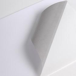 Hexis V300WS1 Monomeer printmedia 45m x 1600mm
