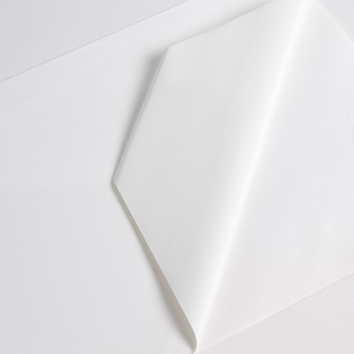 Hexis VCXR101WG1 Gegoten printmedia 45m x 1370mm