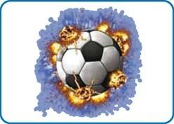 StahlsCCSSPF/5 Cad Color Sportsfilm 5m Printmedia